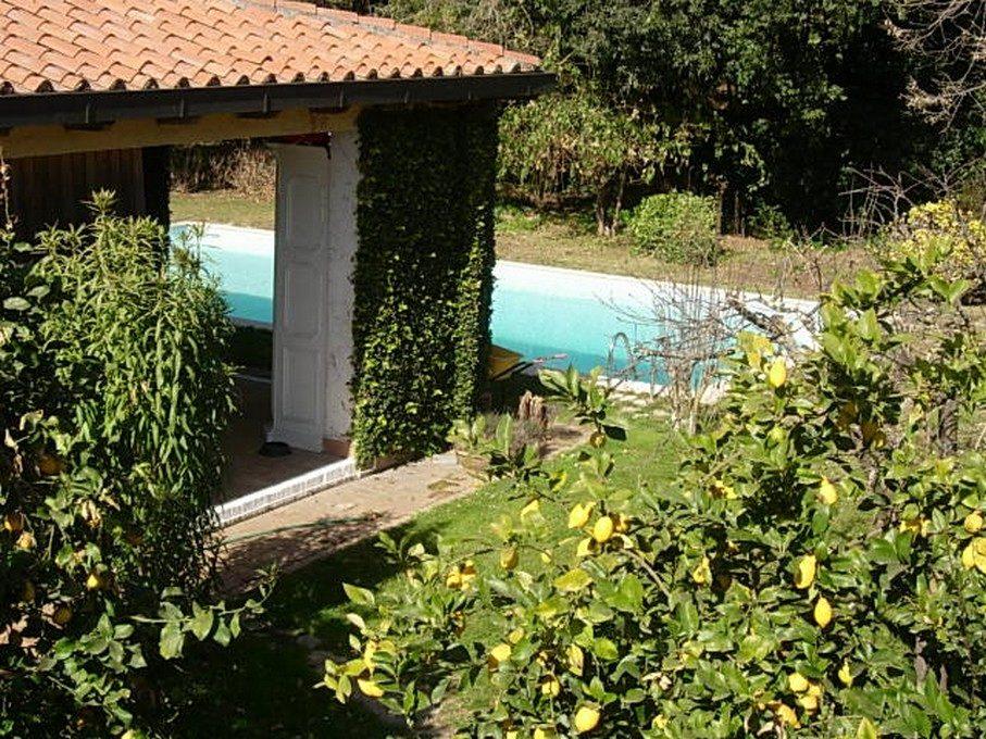 francesco pinto folicaldi - patio piscina 2
