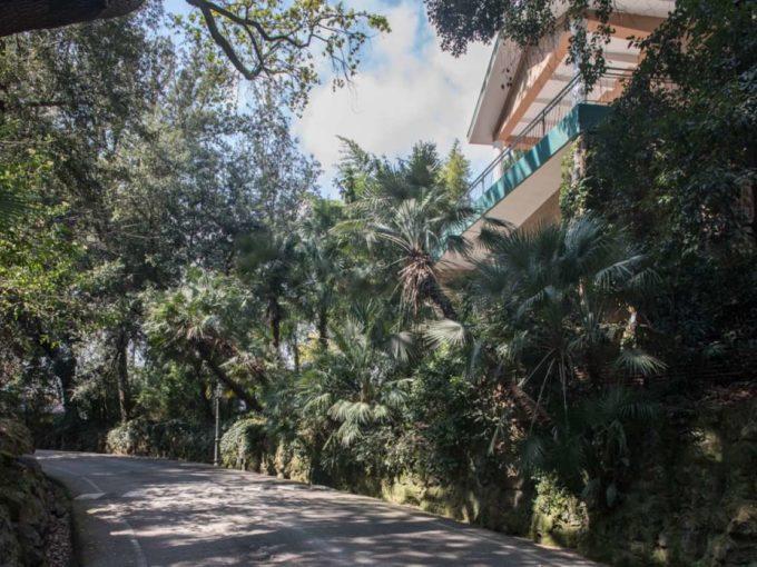 Affitto villa bifamiliare, via di Villa Ruffo, Roma