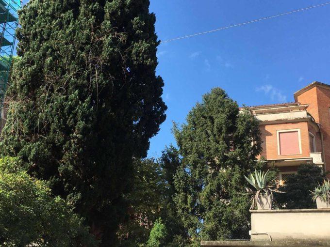 Appartamento in vendita, via Reno, Roma