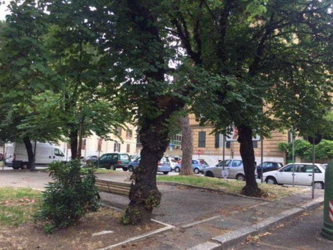 Appartamento in affitto piazza Trento, Roma