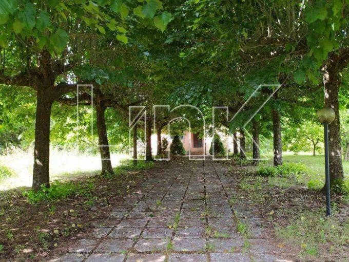 Villa in vendita via delle Carrozze, Rocca Priora