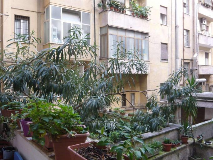 Appartamento in vendita via Fregene, Roma